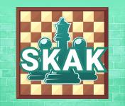 Play Skak